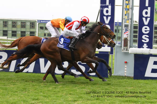 Grape Vine winning in Cape Town