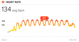 My heart rate during an interval session - does my excitement about the symmetry of the graph say anything about what an exercise nerd I've become?