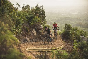 One of the purpose-built sections of trail above Kirstenbosch (pic: Desmond Louw, from Bicycling.co.za)
